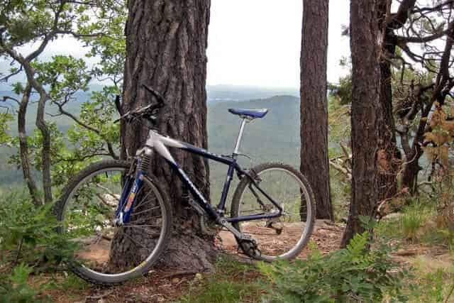 Mountain Bike Rental Rates: How Much You Might Pay, and What You're Paying For